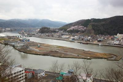2012sakura4754